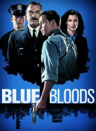 Blue Bloods - Saison 8